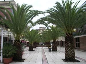 Sassari, Sardynia