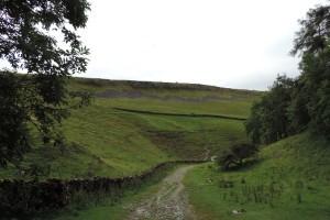Estate Nature Trail