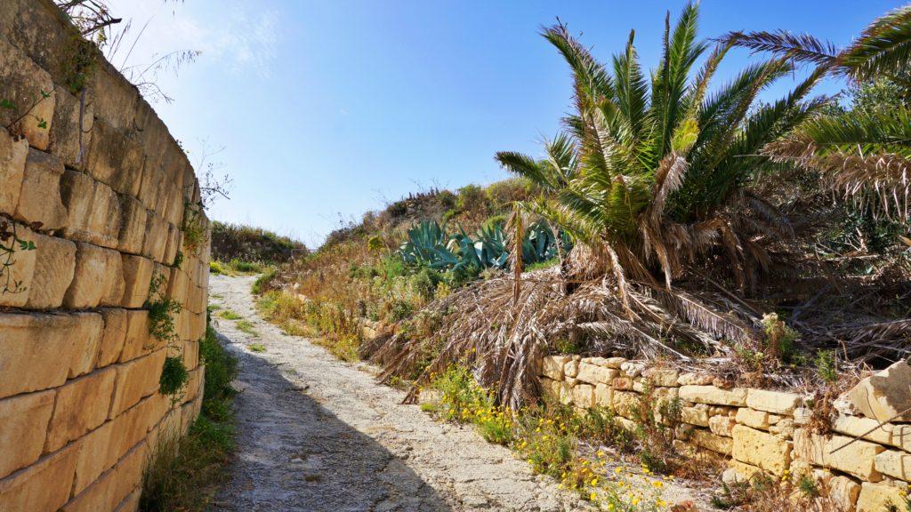 Tas-Salvatur, Gozo, Malta